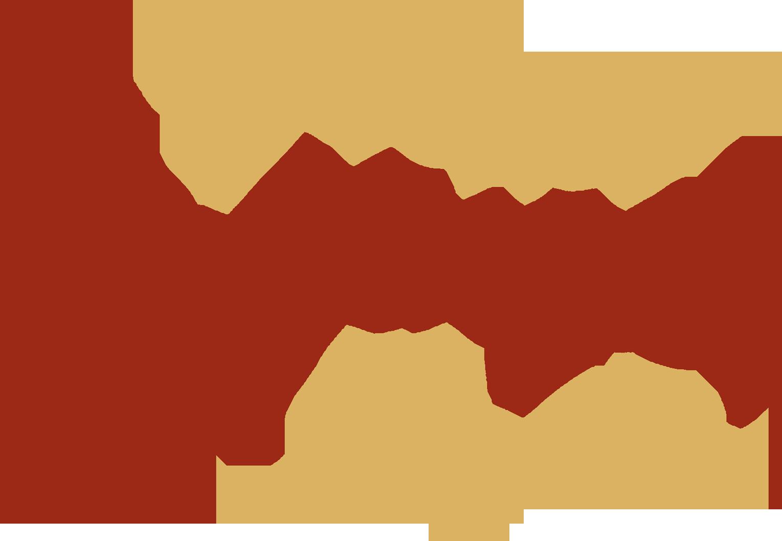 Haus Palfinger Resi